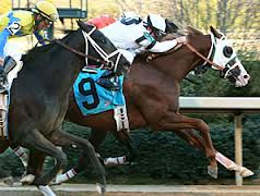 Will Take Charge Wins the Smarty Jones