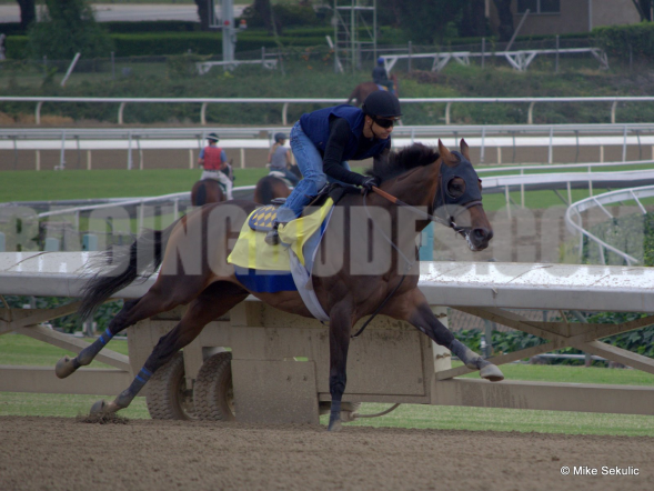 Game On Dude Dominated the Pacific Classic