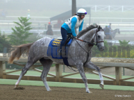 Flashback Looks to get back into the Winners Circle