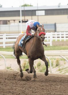 Broadway Empire Headlines the Zia Park Derby