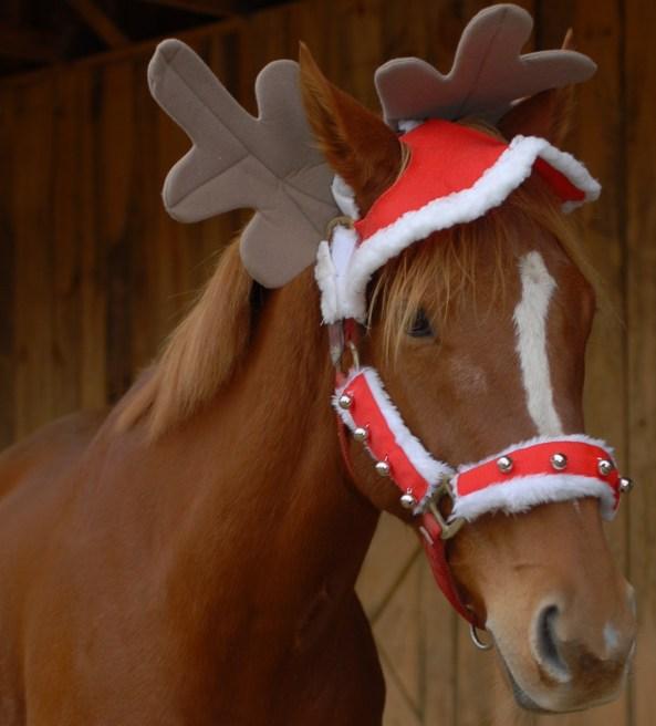 xmas_horse