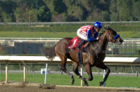 Can Bayern win the Grade 1, $1 million Arkansas Derby?