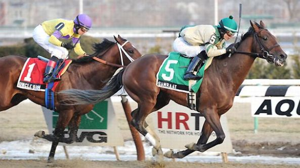 Four weeks after a memorable stretch drive in which Samraat just held off Uncle Sigh in the Withers Stakes (gr. III) at Aqueduct Racetrack, those two New York-bred rivals will hook up again at the Jamaica, N.Y. track in the $500,000 Gotham Stakes (gr. II) March 1. NYRA/Adam Coglianese