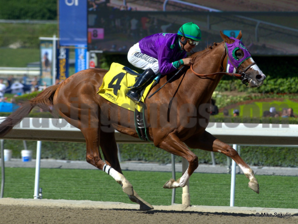 All Eyes will be on California Chrome