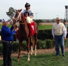 Thoroughbred Racing Dudes Free Horse Racing Selections